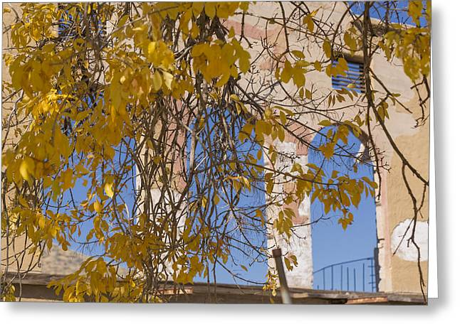 Fall Leaves On Open Windows Jerome Greeting Card by Scott Campbell