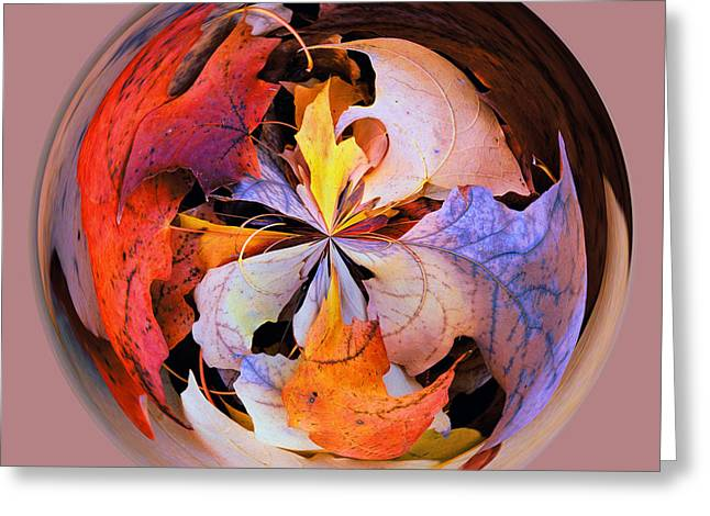 Fall Leaves Orb Greeting Card