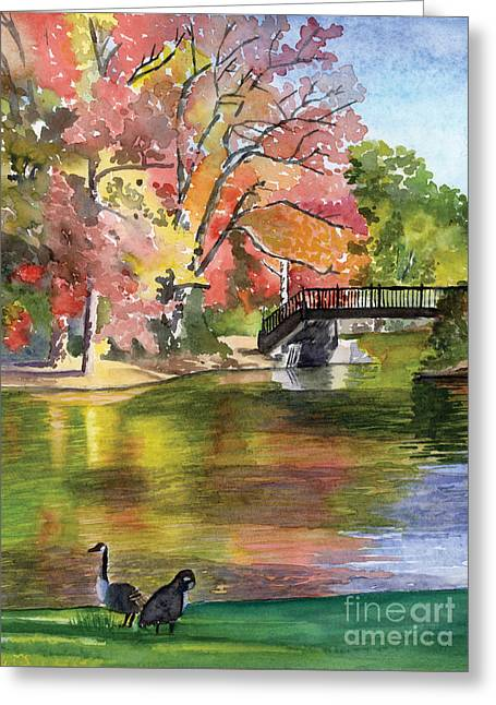Fall Light - Roger Williams Park Greeting Card by Hollis Machala
