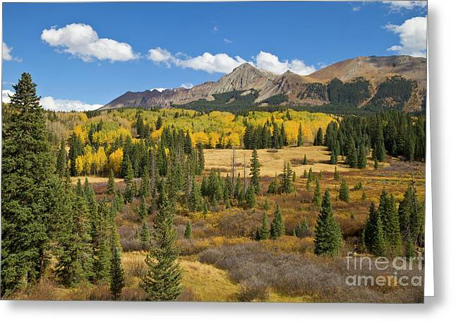 Fall Meadow Rocky Mountains Colorado Greeting Card by Yva Momatiuk John Eastcott