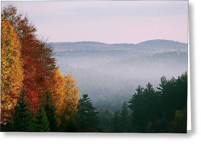 Greeting Card featuring the photograph Fall Morning by David Porteus