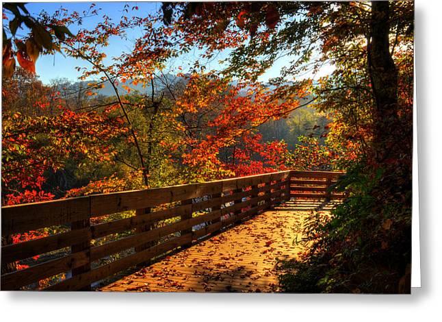 Fall Morning Walk Greeting Card