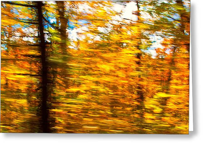 Fall Motion Greeting Card
