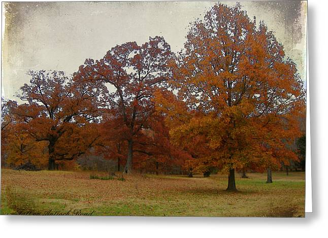 Fall On Antioch Road Greeting Card