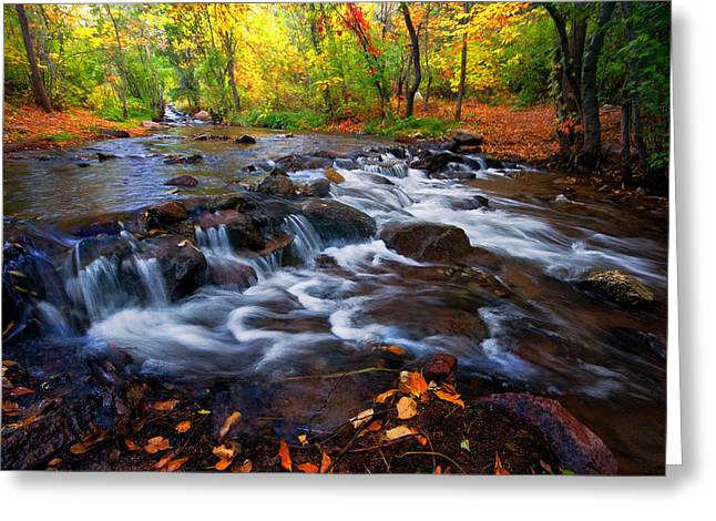 Greeting Card featuring the photograph Fall On Fountain Creek by Ronda Kimbrow