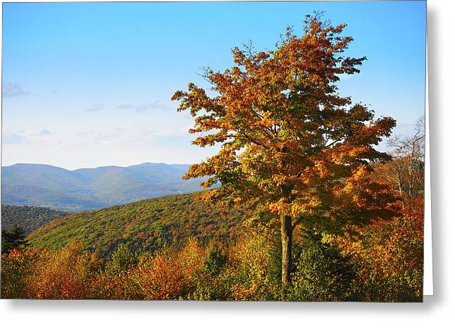 Fall On Mt. Greylock Greeting Card