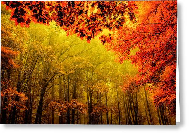 Fall On Steroids - Blue Ridge Parkway Greeting Card by Dan Carmichael