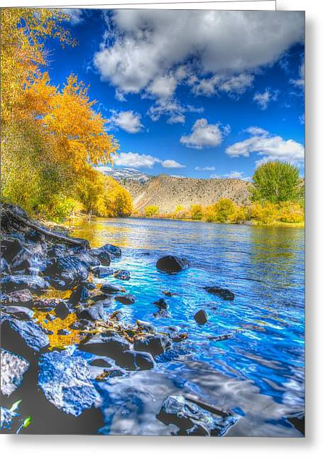 Greeting Card featuring the photograph Fall On The Big Hole River  by Kevin Bone