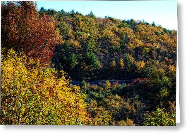 Greeting Card featuring the photograph Fall On The Blue Ridge Parkway by Cathy Shiflett