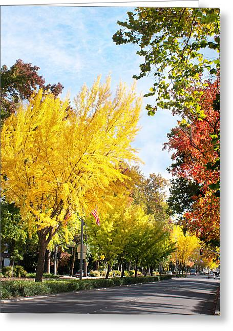 Fall On The Esplanade  Greeting Card