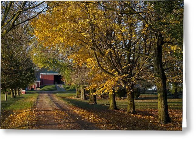 Fall On The Farm Greeting Card by John-Paul Fillion