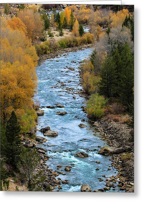 Fall On The Gros Ventre River Greeting Card