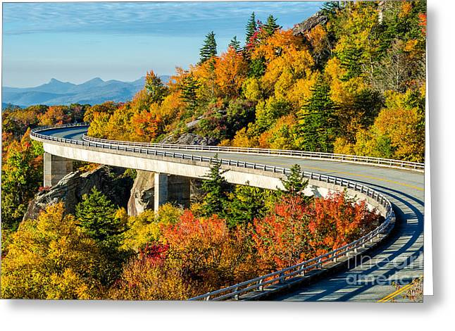 Fall On The Parkway Greeting Card