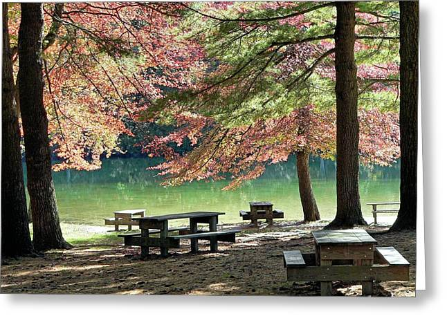 Greeting Card featuring the photograph Fall Picnic by Janice Drew