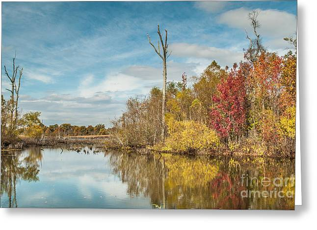 Greeting Card featuring the photograph Fall Pond by Debbie Green