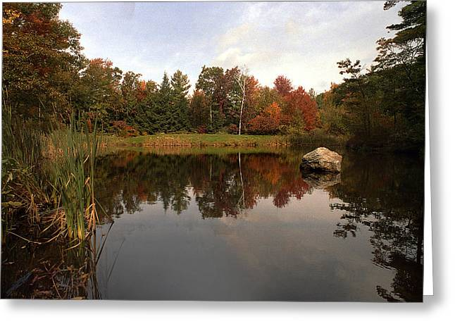 Fall Pond Greeting Card by Skip Willits