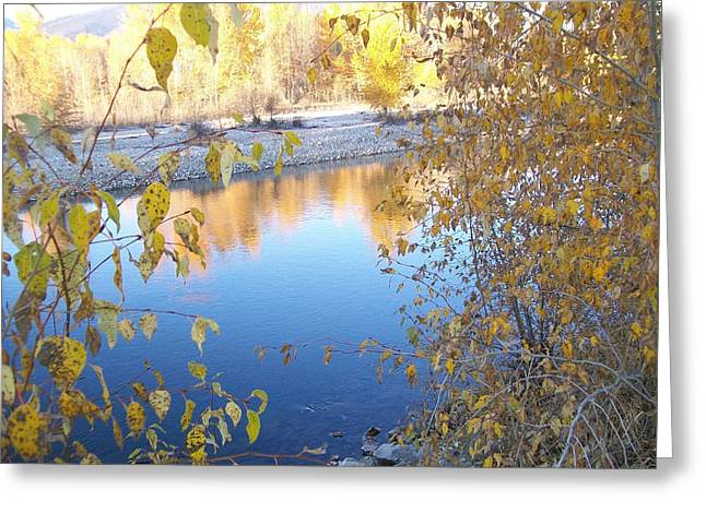Greeting Card featuring the photograph Fall Reflection by Jewel Hengen