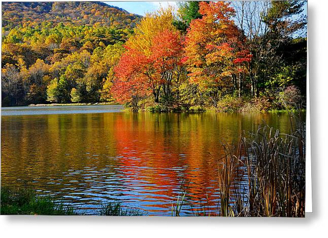 Fall Reflection Greeting Card by Todd Hostetter