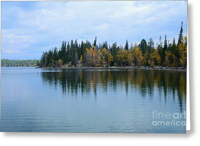 Fall Reflections Greeting Card by Kathleen Struckle
