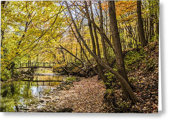 Fall Reflections Greeting Card by Thomas Visintainer