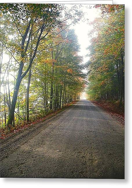 Fall Road Greeting Card by John Nielsen