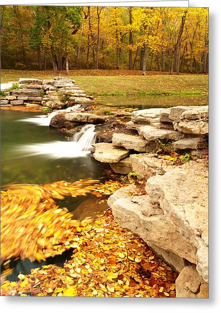 Fall Serenity Greeting Card by Gregory Ballos