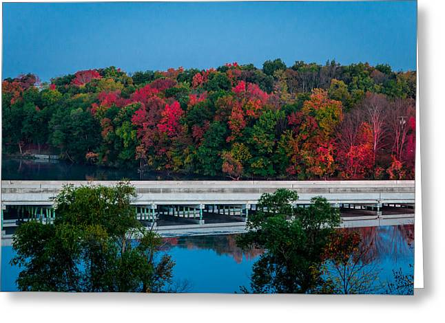 Fall Splendor Greeting Card by Gene Sherrill