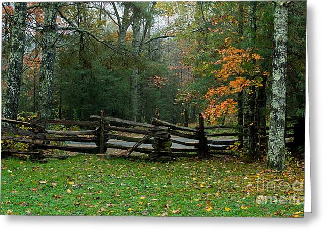 Fall Split Rail Fence Scenic Greeting Card