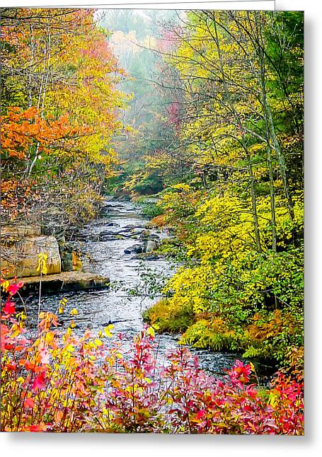 Fall Stream In New Hampshire Greeting Card