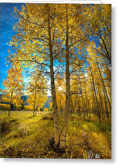 Fall Sunrise Greeting Card by Rick Machle