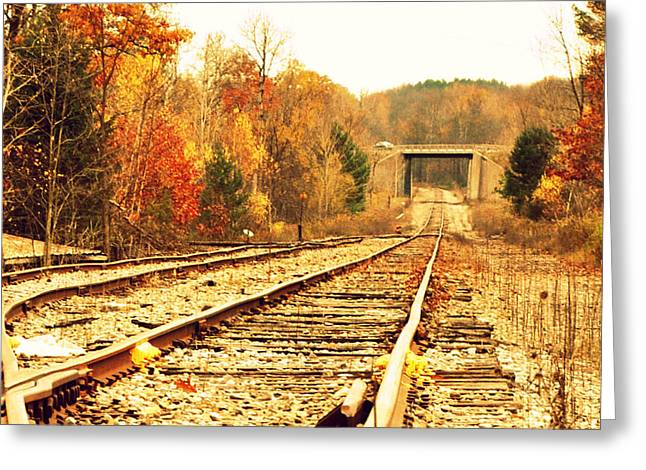 Fall Tracks Greeting Card by Stephanie Grooms