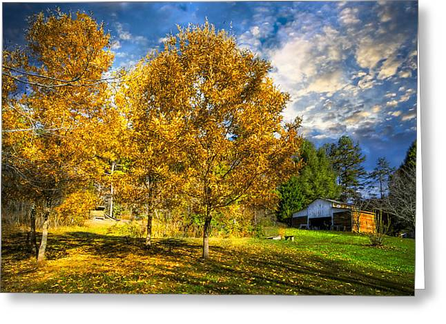 Fall Trees At The Farm Greeting Card by Debra and Dave Vanderlaan