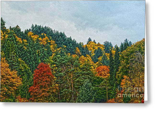 Fall Trees Greeting Card by Nur Roy