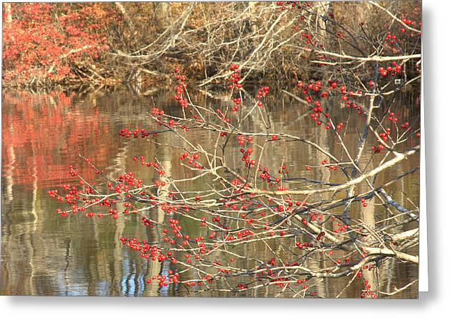Fall Upon The Water Greeting Card