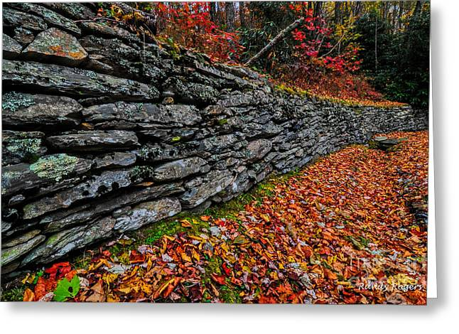 Fall Wall Greeting Card