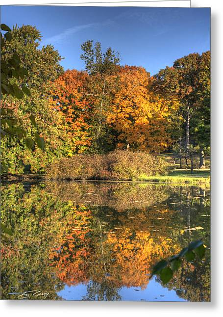 Fall - Which Side Is Up Greeting Card