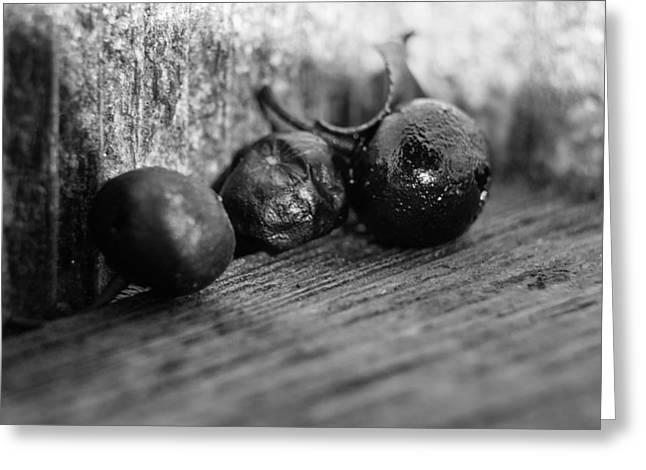 Fallen Berries Greeting Card