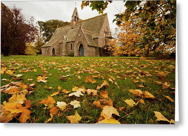 Fallen Leaves On The Grass In Front Greeting Card