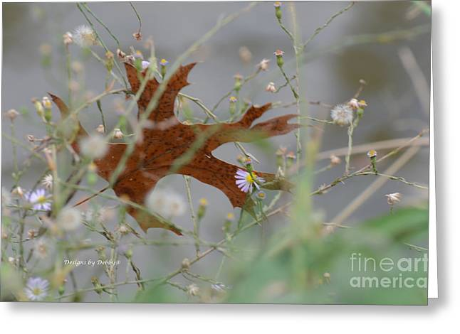 Greeting Card featuring the photograph Fallen Oak Leaf Caught In Weeds by Debby Pueschel