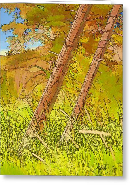 Fallen Pines Greeting Card