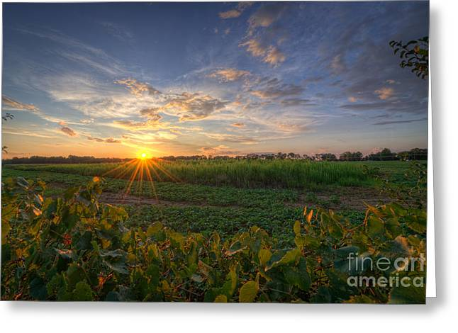 Falling Below The Horizon  Greeting Card by Michael Ver Sprill