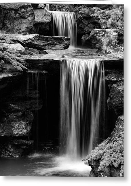 Falling Bw Greeting Card