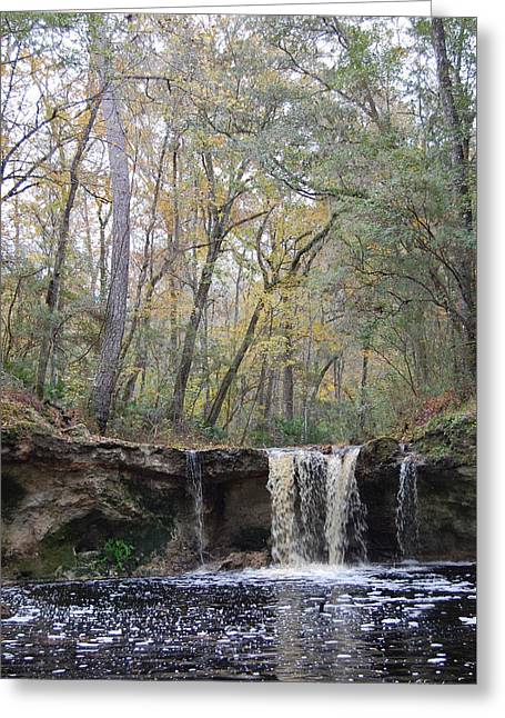 Falling Creek Falls - Columbia County Park Greeting Card