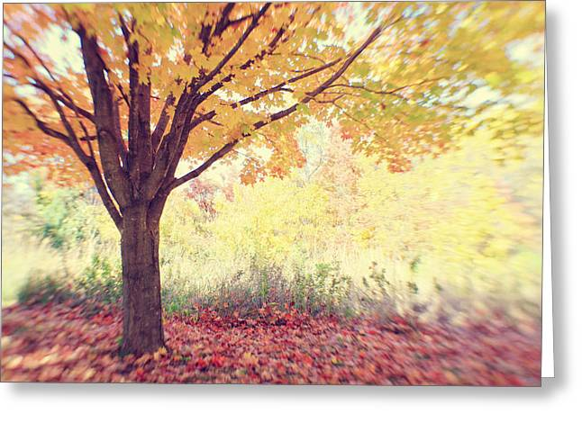 Falling Leaves Greeting Card by Heather Green