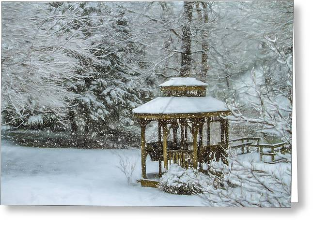 Falling Snow - Winter Landscape Greeting Card by Barry Jones