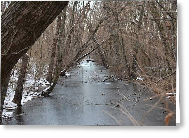Falling Trees On A Frozen Canal Greeting Card by Bill Helman