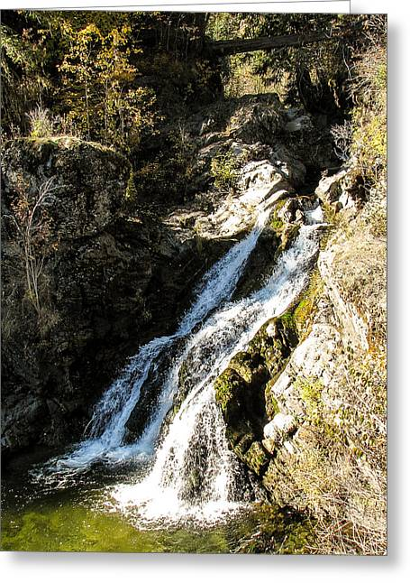 Falling Water Greeting Card by Curtis Stein