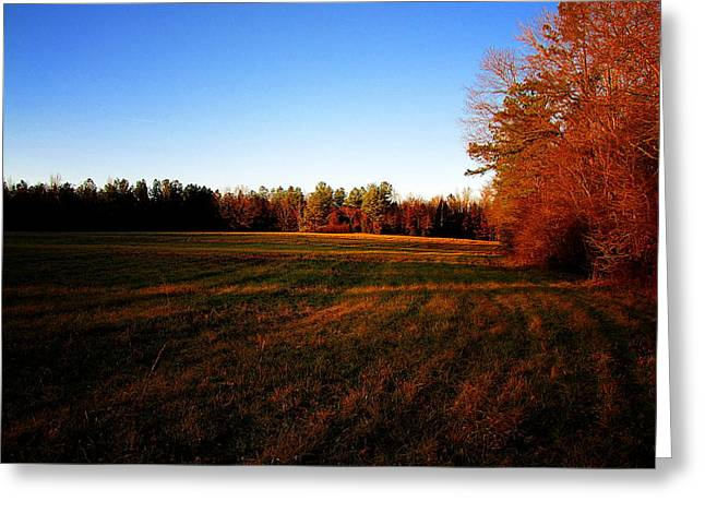 Greeting Card featuring the photograph Fallow Field by Greg Simmons