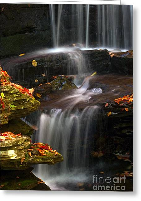 Falls And Fall Leaves Greeting Card
