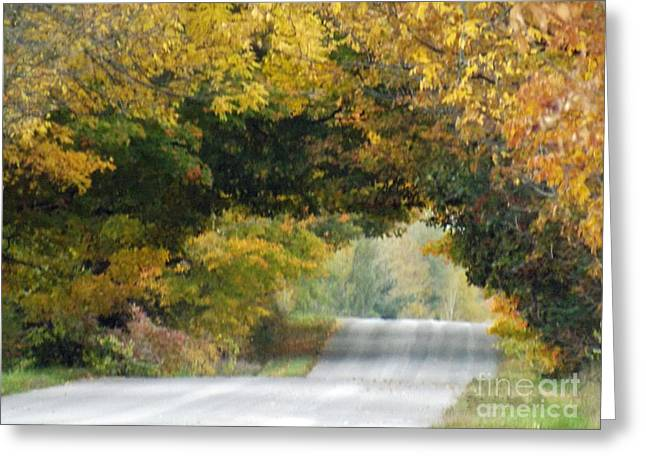 Falls Archway  Greeting Card by Brenda Brown